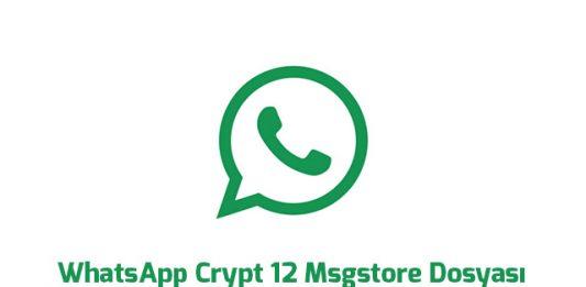 whatsapp-crypt-12-msgstore-dosyasi-nasil-acilir